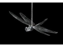 Dragonfly-140008